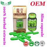 Mo Bian Weight Loss Capsule, Effective Slimming Product