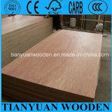 3 Layer Poplar Sheet Plywood