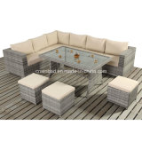Outdoor Table Sofa Set with SGS Certificated (404-A)
