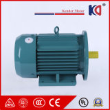 High Voltage Asynchronous Permanent Mini AC Electric Motor
