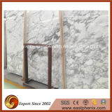 Imported Calacatta White Marble Slab for Interior and Exterior Decoration