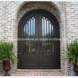 Decorative Front Entry Wrought Iron Door (UID-D013)