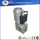 Excellent Craftsmanship High Quality and Inexpensive Energy-Saving Worm Motor