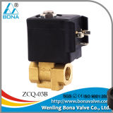 Steam Soleoid Valve For Steam Iron (ZCQ-03B)