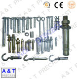 Galvanized /Stainless Steel/Carbon Steel/ Sleeve Anchor with Eye Bolt M12
