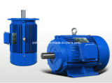 Ye2 Series Cast Iron Three Phase AC Induction Electric Motor
