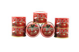 China Hot Sell 70g-4500g Canned Tomato Paste