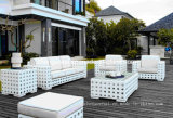 White Rattan Outdoor Furniture, Sectional Sofa (DH-9576)