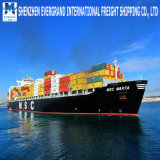 China Sea Freight Door to Door Canada