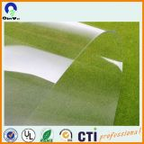 0.3mm Thickness PVC Transparent Rigid PVC Sheet for Printing