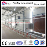 Automatic Prefabricated Layer Chicken House
