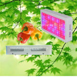 Indoor Grow Lighting 300W LED Grow Light