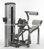 Commercial Fitness Equipment Back Extension Machine 9A011