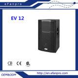 Deft Design Single 12 Inch Full Frequency Moitor Speaker