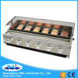 Six Burner Stainless Steel Gas BBQ Grill