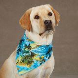 Eco-Friendly OEM Design Dog Bandana