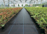 China PP Woven Anti Grass Weed Control Mat