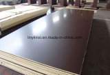 Hardwood Core Marine Plywood/Shuttering Plywood/Film Faced Plywood for Construction
