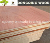 Red Meranti Commercial Plywood with 4ftx8FT