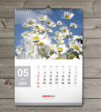 Big Size Printing Wall Calendar (NB-024)