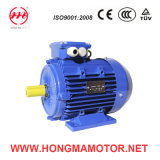 Squirrel-Cage Three Phase Variable Speed Induction Motor (132S-6P/4P-3/4KW)