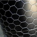 Hot Dipped Galvanized Chicken Wire Netting