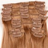 Xuchang Beautyhair Hot Selling Grade 8A Clip in Hair Extension