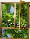 Popular Powder Coated Cheap Aluminun Casement Window (ACW-034)