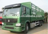 Sinotruck HOWO Cargo Truck with One Bed Cab
