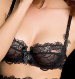 2014 New Sexy Lingerie Set, Sexi Lace Bra Set Without Pad