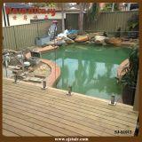 Stainless Steel Glass Spigot for Swimming Pool Railing (SJ-S1012)