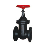 Cast Iron Flanged Wedge Gate Valve with No-Rising Stem