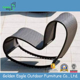 Special Shape Rattan Furniture Swing Chair (L0031)
