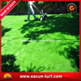 Competitive Landscape Synthetic Grass Price for Home and Garden Decoration