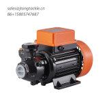 Peripheral Pump for Clean Water Garden Farm Gurantee Quality Reasonable Price Kf Water Pump