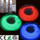 110V/220V//240V/127V/277V RGB Color Changing LED Strip Light ETL LED Ribbon