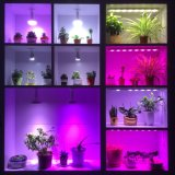 Full Spectrum K4 18PCS Grow Light for Succulent Plant