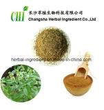 98% Thymol Memory Improving Thyme Extract, Thyme Leaf Extract Powder