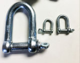 Forged Steel Dee Shackles