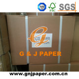 OEM Brand Recording Chart Paper for Hospital Supply
