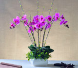 Artificial Decorative Flower Arrangement Orchid Flower