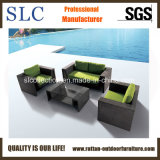 High Quality Outdoor Furniture/ Garden Furniture (SC-A7281)