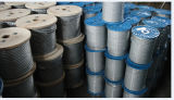 Galvanized Rope, Wire Rope 7X7 for Rock
