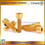 Gr2 Gr5 Hex Socket Titanium Bolts with Low Price