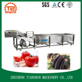 Wash Machine and Washing Machinery for Vegetable Bubble Type Washing