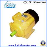 Yl/Yc/Yy/My Series Single-Phase AC Electric Motor with Ce