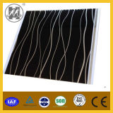Newly Design PVC Panel for Wall Decoration