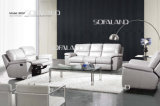 Living Room Furniture/ Sofa (802)