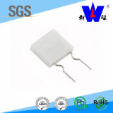 Ceramic Encased Wirewound Resistor with ISO9001 (RGCW)