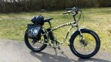 Green Power 500W Fat Tyre Electric Bicycle Made in China